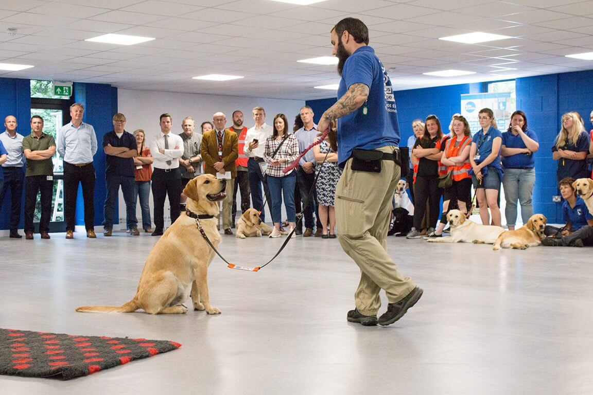 Bostik leads the way with Guide Dogs charity project